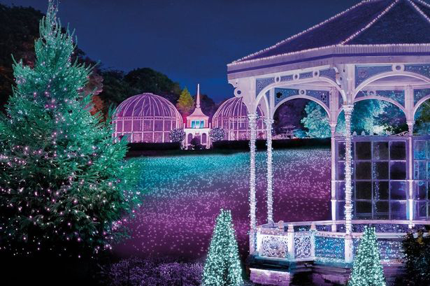Bright Lights of Brum at The Birmingham Botanical Gardens